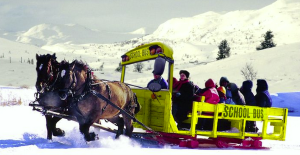 Horsedrawn School Bus